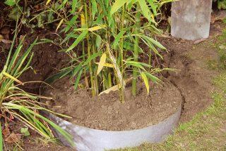 Plantex Wurzelsperre